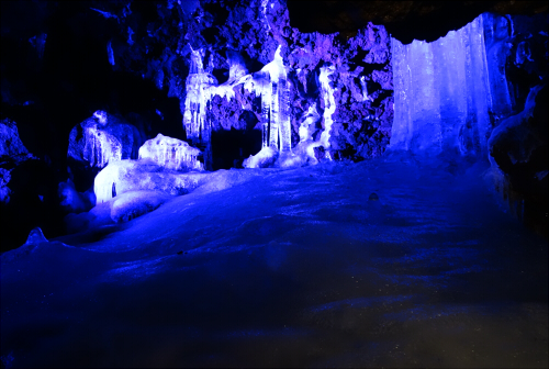 鳴沢氷穴ライトアップされた氷