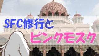 SFC修行とピンクモスク