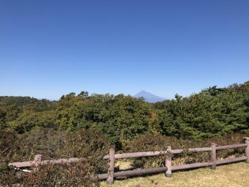 ホテルから見える富士山