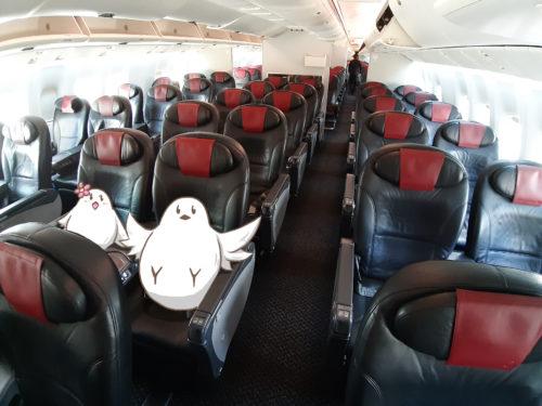 JAL国内線クラスJ