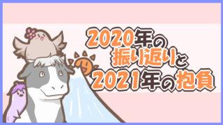 2020年の振り返りと2021年の抱負