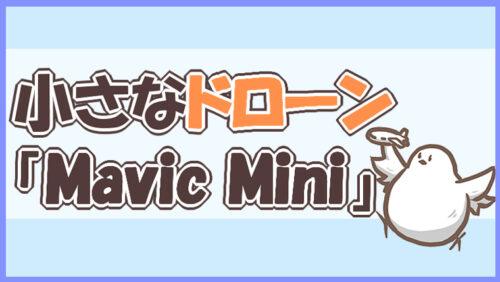 小さなドローンMavic Mini