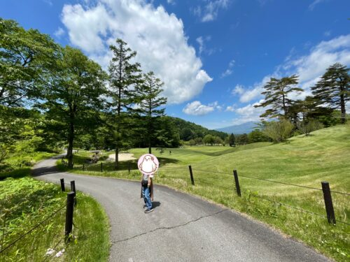 散策路「森の小道」